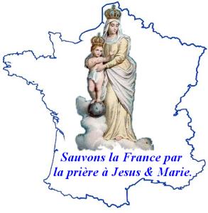 SAUVER.FRANCE.GRAND.LOGO